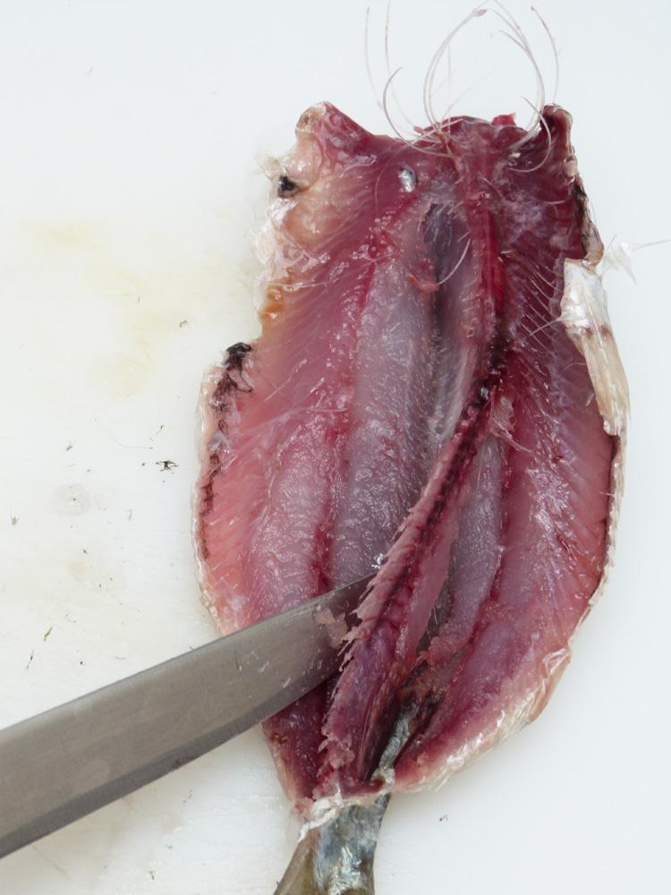 ensalada de sardines2